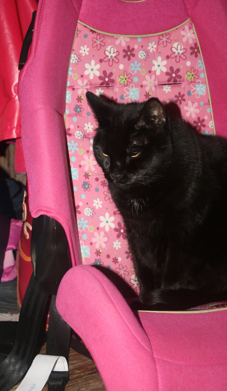 Tinkerbell in the car seat.jpg