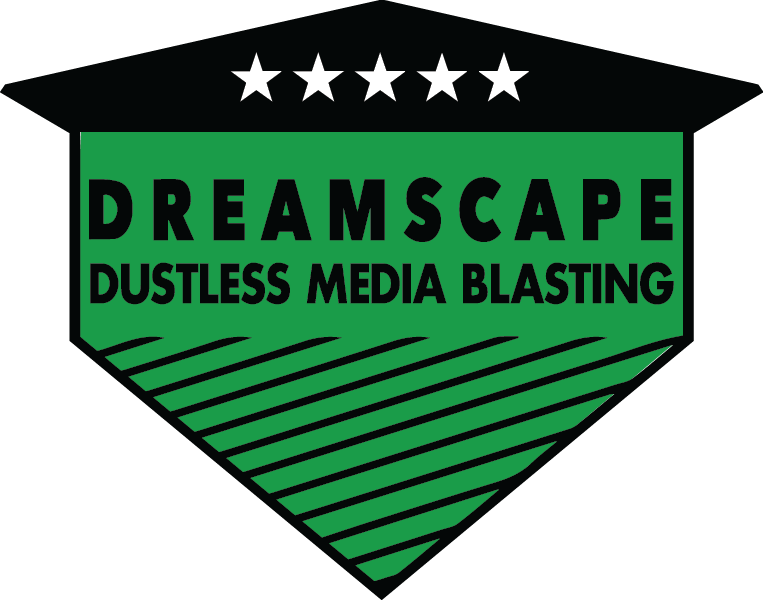 DS Blasting Logo.png