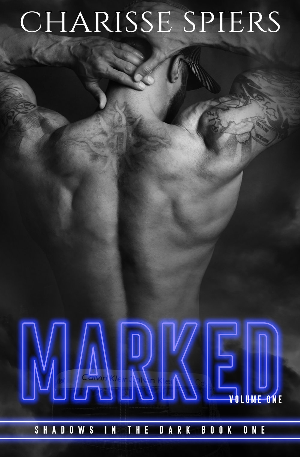 FIRST IN A SERIES! STANDALONE.  Please consider leaving a review on any sales channel, including  GoodReads .