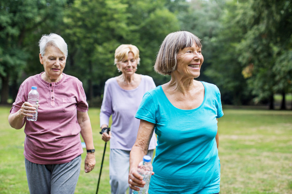 Healthy-senior-women-walking-in-park-623825560_1258x838.jpeg