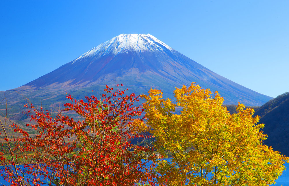 An Autumn Pilgrimage Retreat in Japan, November 2019 - HIKING  YOGA  FELDENKRAIS  MEDITATION For preliminary details email Sara@yogamoves.net.auFull details available from Sara in July.