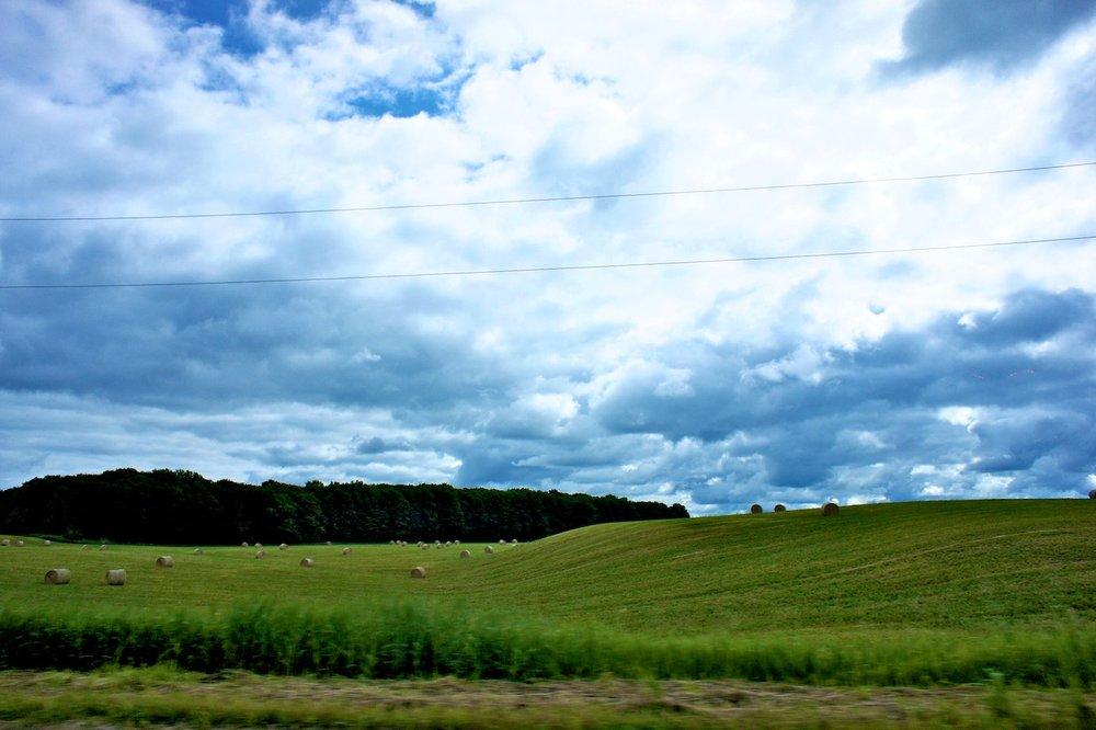 field .jpg