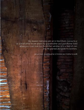 A_Lineage_book_Jessica_Todd (3).jpg