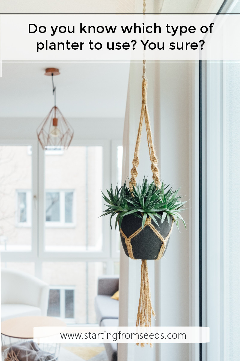 Different Types Of Planters For Your Home