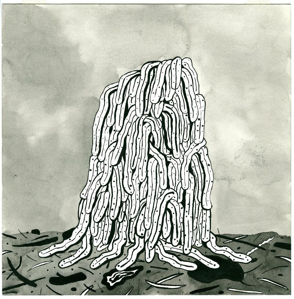 Fungus-Worms_o.jpg
