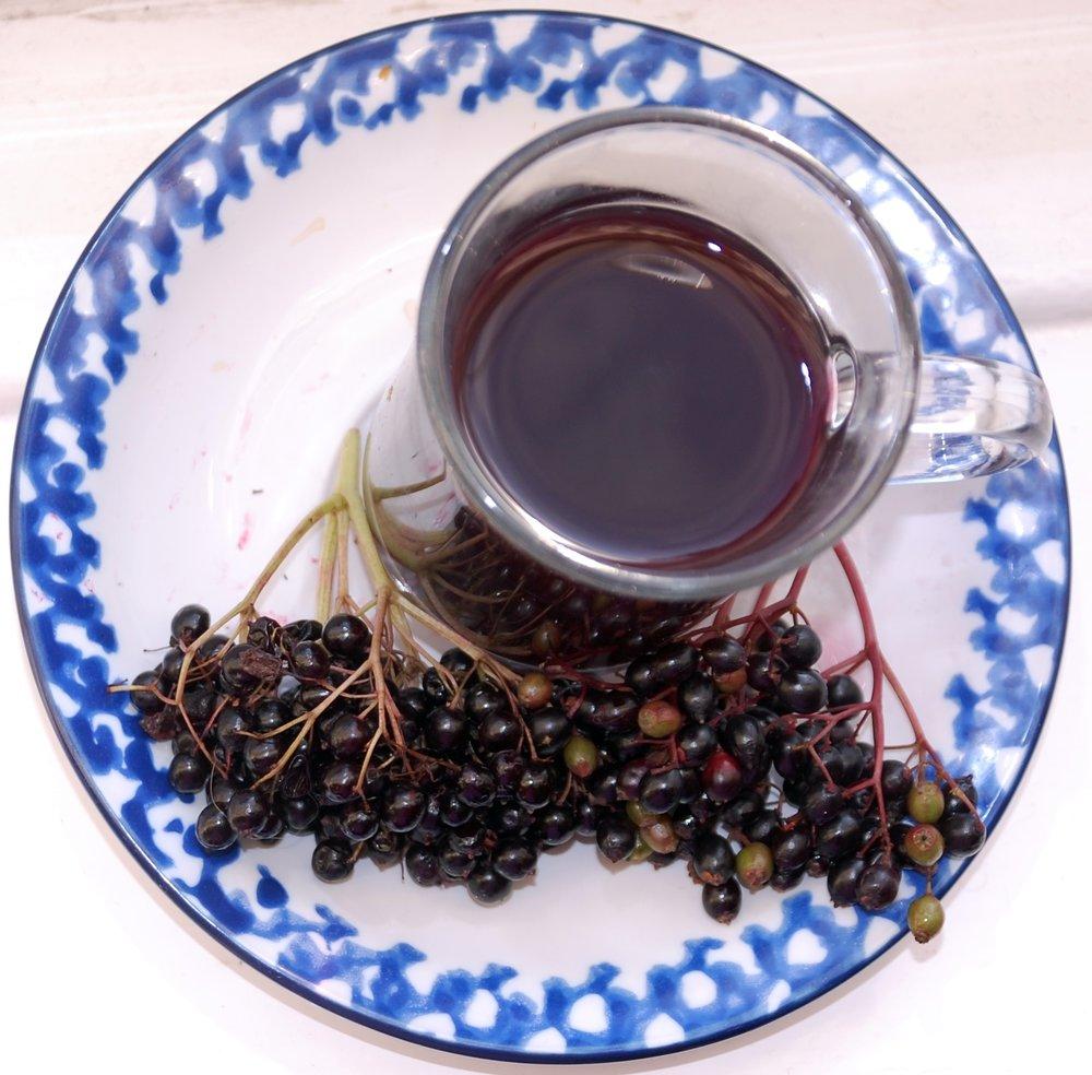 elderberrysyrupcup.JPG