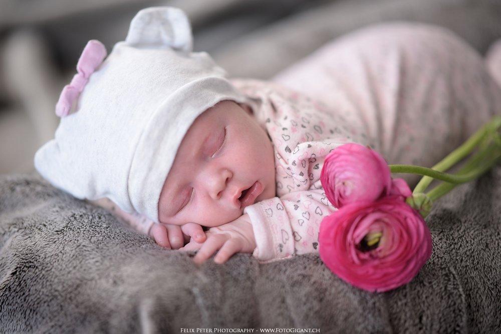 Felix-Peter_Baby-Newborn-Fotografie_Bern03.jpg