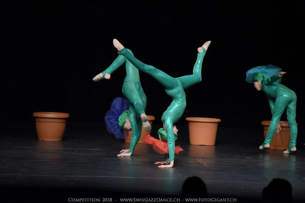 Showdance_2018_0079s.jpg