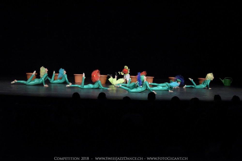Showdance_2018_0096s.jpg