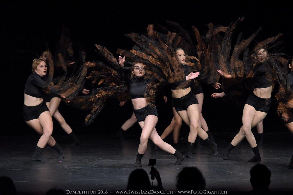Showdance_2018_1605s.jpg