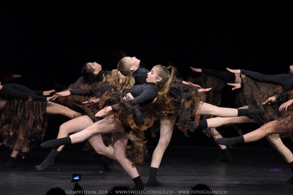 Showdance_2018_1632s.jpg