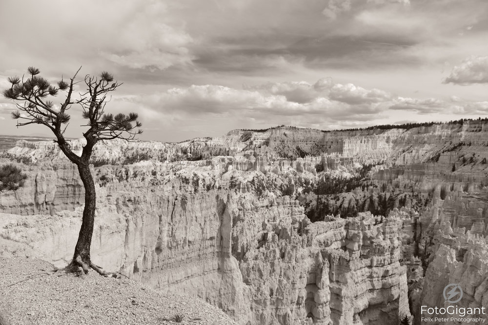 Bryce-Canyon_108_Landscape-fb.jpg