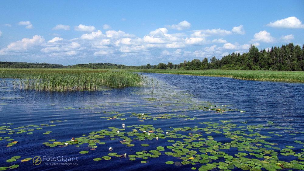 Reisefotograf_Felix-Peter_Finnland_12.jpg