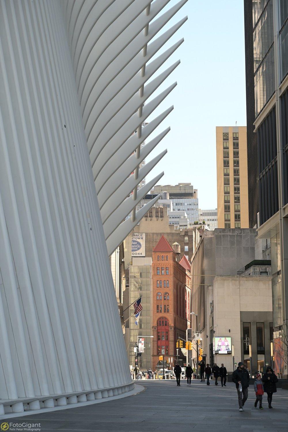 NEW-YORK_Manhattan_40.jpg