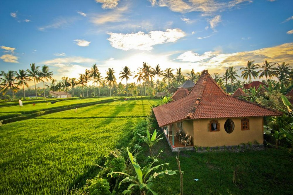 Dragonfly Village - Ubud