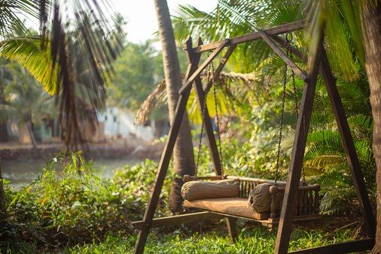 Perfekt ställe att läsa en bok och njuta av naturen