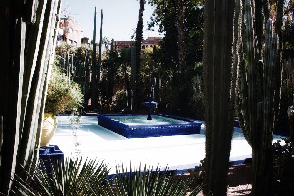 Jardin majorelle marrakech 3 jpg
