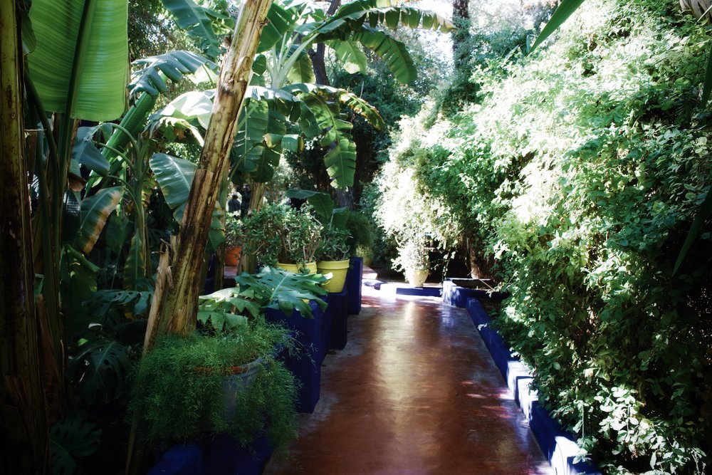 jardin majorelle marrakech-7.jpg