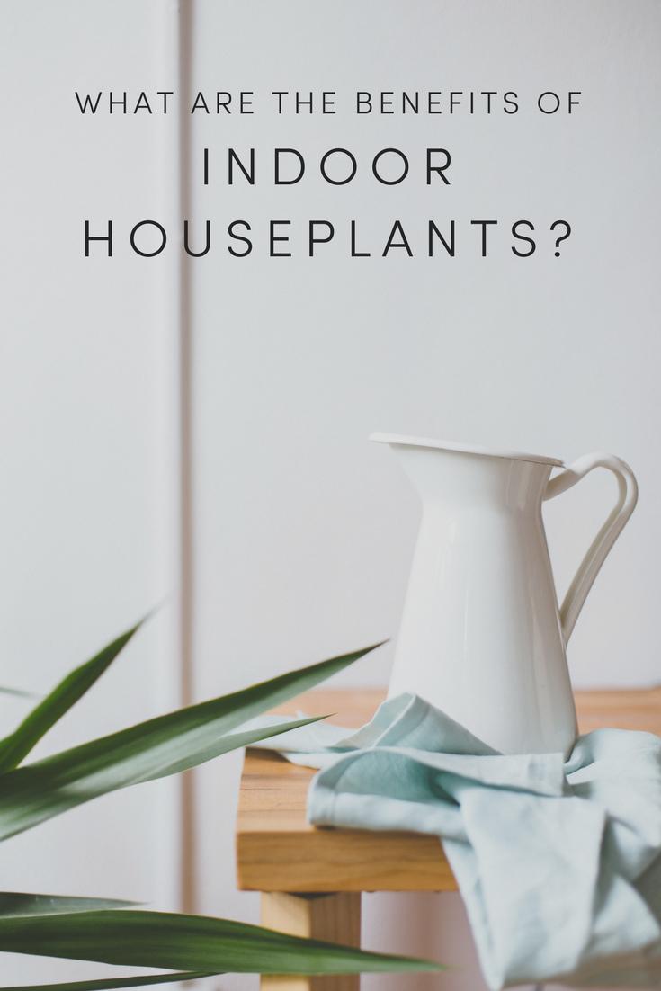 benefits of indoor houseplants.png