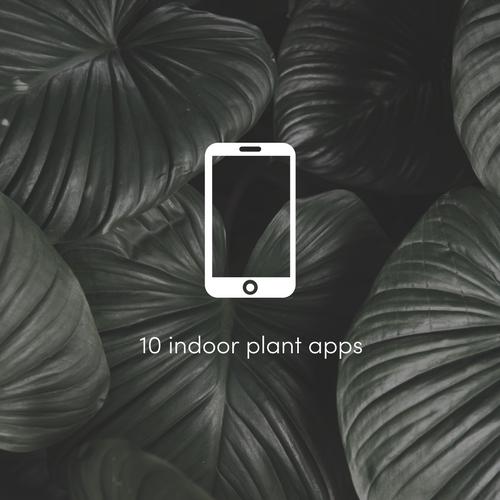 10 best indoor plant apps.png