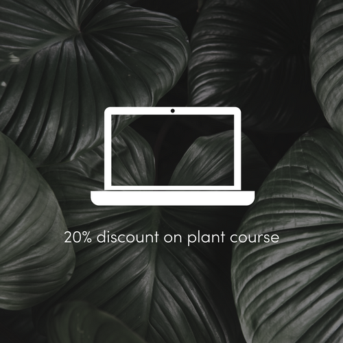 20 discount on indoor plant course.png