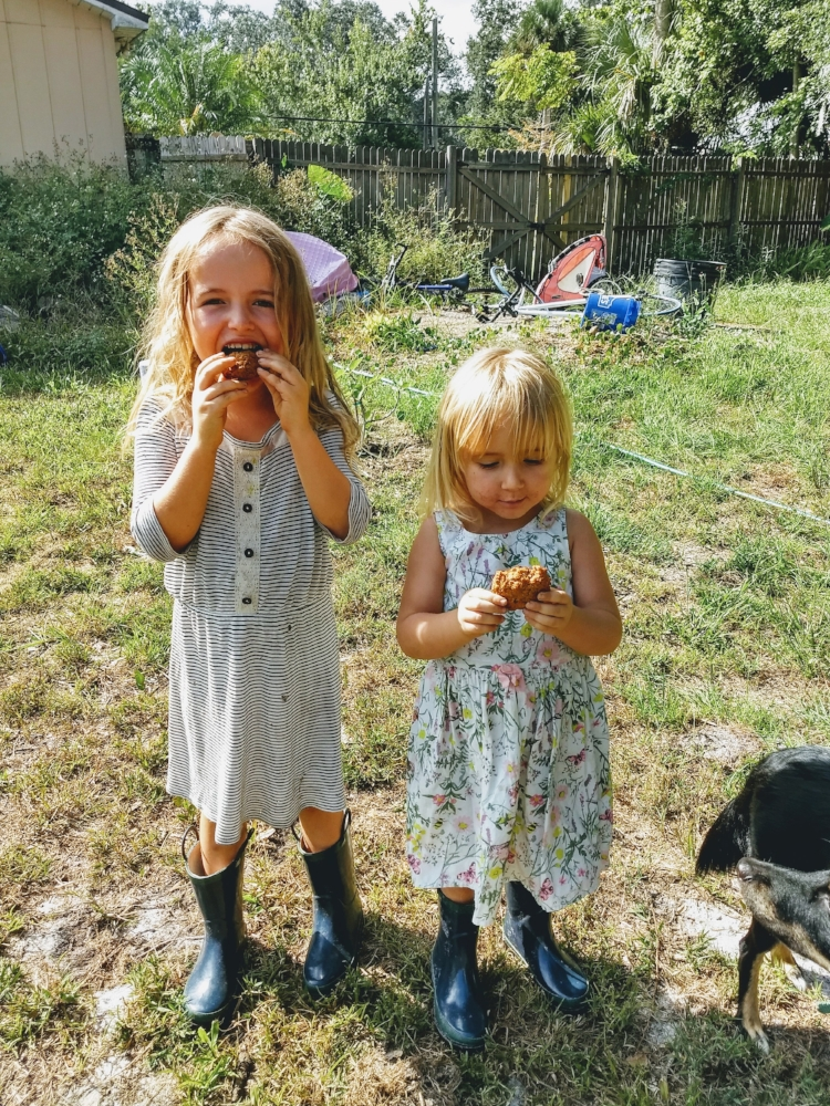Seriously, just look at my kids, happy as can be chowing down on their gluten-free, vegan, more-like-healthy-muffins-but-whatever-they're-delicious-anyway cookies.