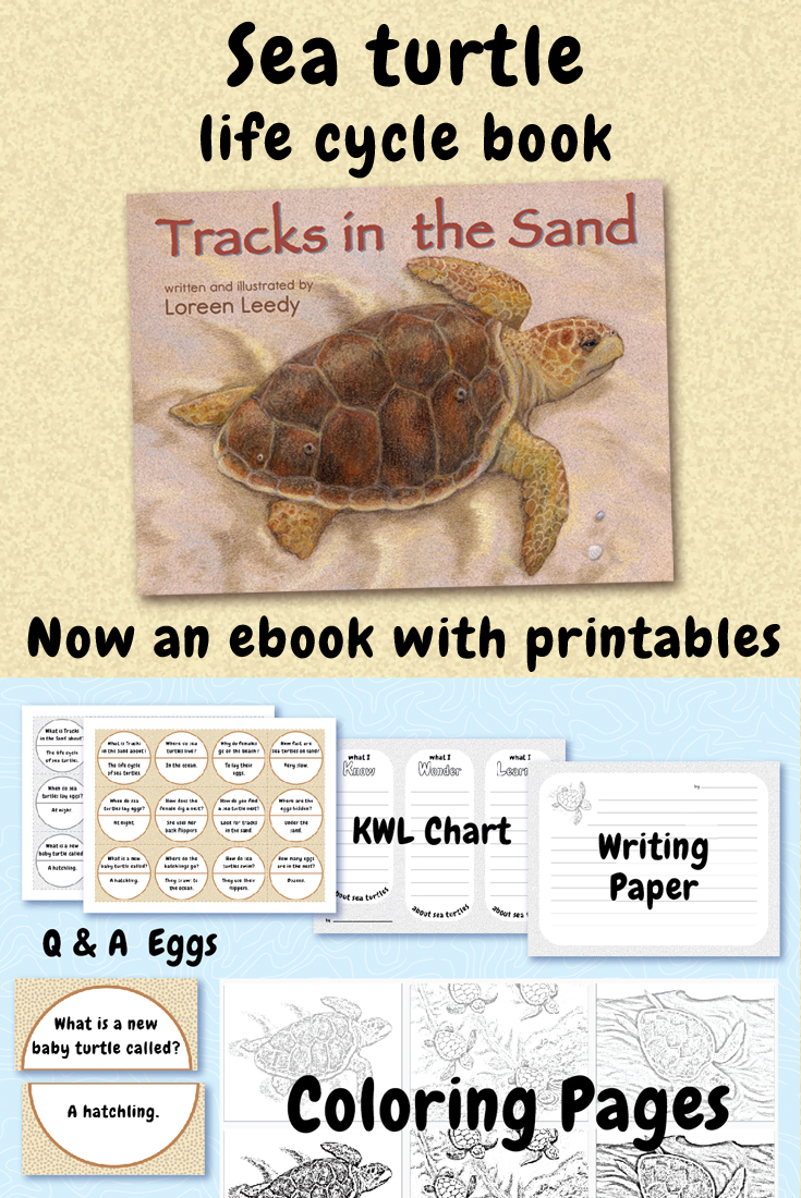 - Recently I decided to put Tracks in PDF form, which can be read in the iBooks app (without any page-turns), viewed in a PDF reader app, or shown via a projection system in a classroom. Here is a composite image which also shows the printable activity pages. To see a preview in my Teachers Pay Teachers shop, click here.