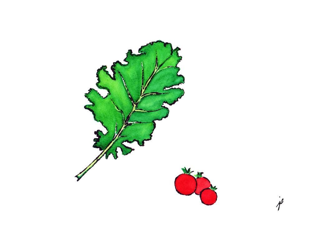 superfoods--kale&tomatoes_jodisam.jpg