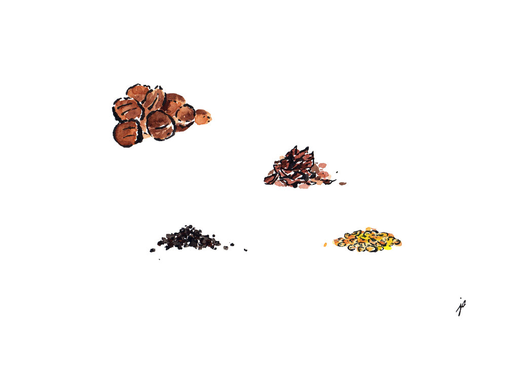 superfoods--nuts&seeds_jodisam.jpg