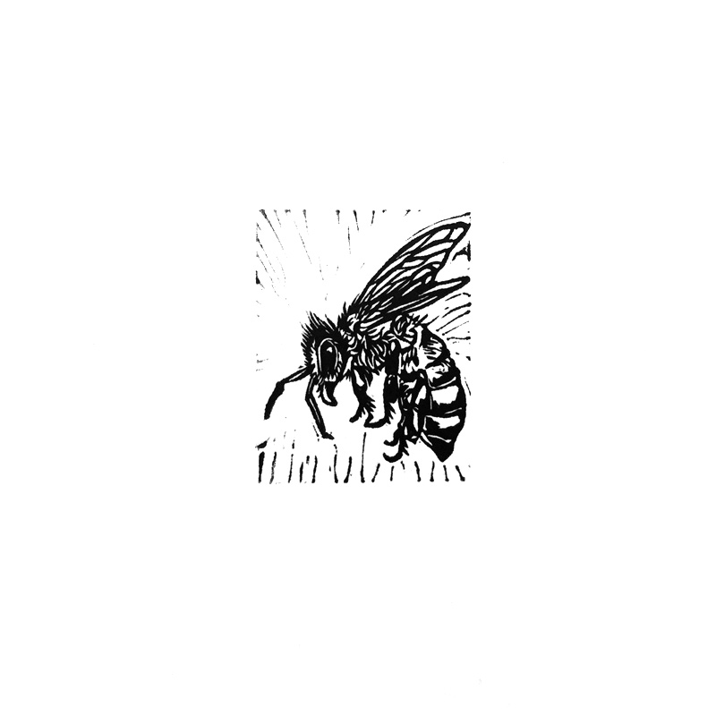 Untitled (Bee III) - Miniature Linocut