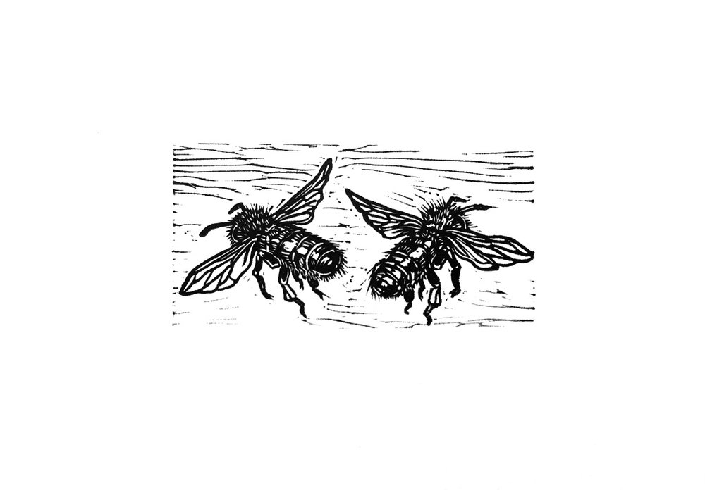 Untitled (Bee II) - Miniature Linocut