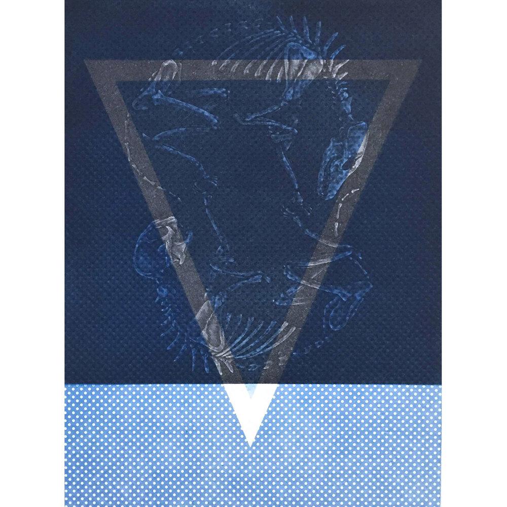 Aqua - Mixed print media