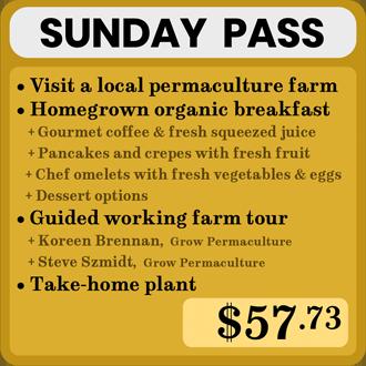 BirdLandWorldTourPurchaseButton-SundayPass-Brooksville,Florida.png