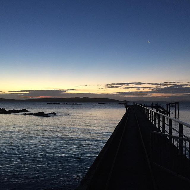 The view from Tiritiri Matangi Island looking out at New Zealand North Island mainland at dusk in March. One of the best places to see native birds in New Zealand. photo by Jozef K. Richards @jozefkrichards  http://www.birdland.world follow @worldofbirdland