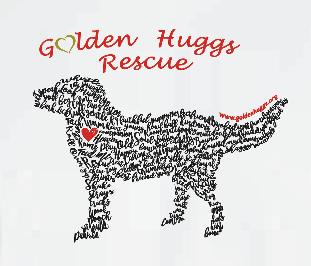 Golden huggs rescue, inc. - P.O.  Box 299Waitsfield, VT 05673info@goldenhuggs.org