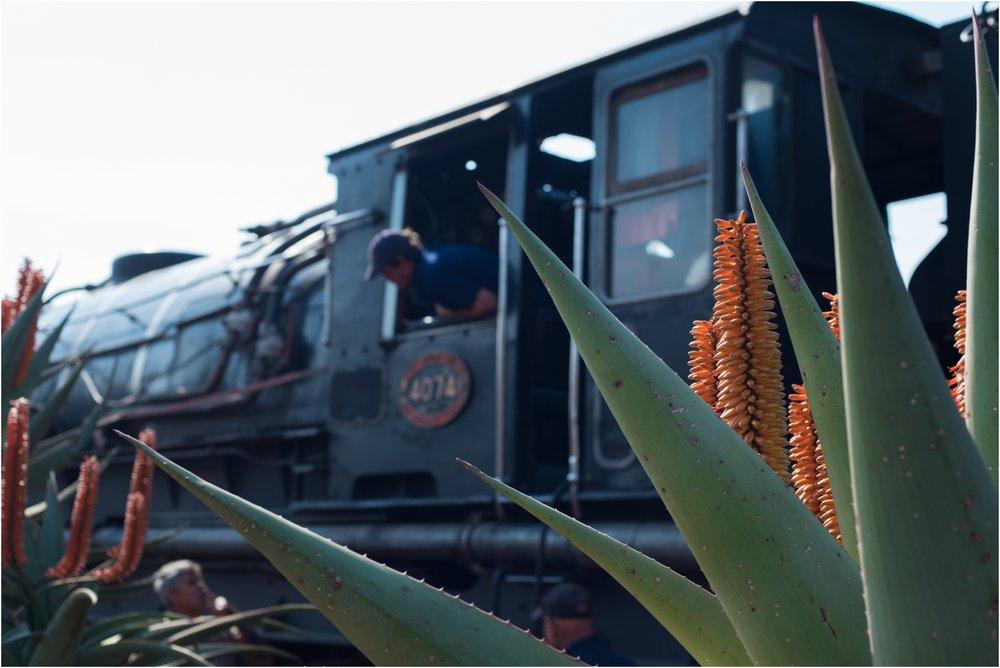 Creighton Aloe Festival in Creighton Kwazulu Natal_0026.jpg