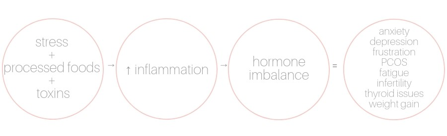 visual process of hormone imbalance and inflammation in the body