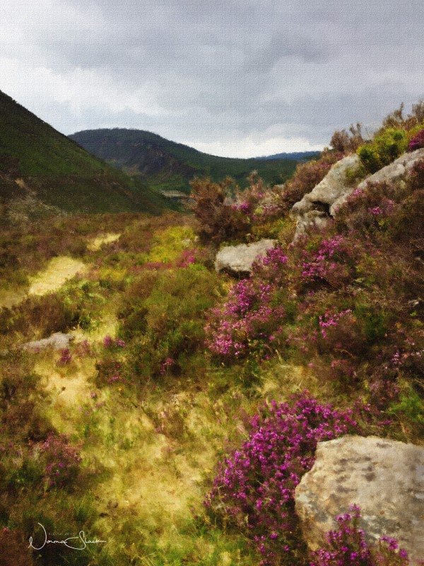 Overlooking The Silent Valley, Reservoir, Mourne Mountains