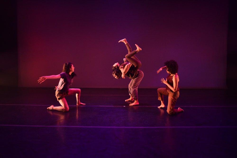 Dancelight 2018 for web 25100554447_95b642d131_o copy.jpg