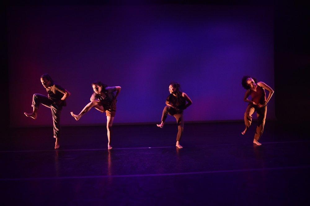 Dancelight 2018 for web 25100555747_b9c4fddd9a_o copy.jpg