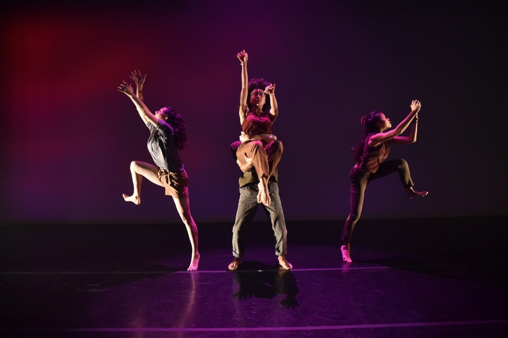 Dancelight 2018 for web 26098543258_48580b0c7b_o copy.jpg