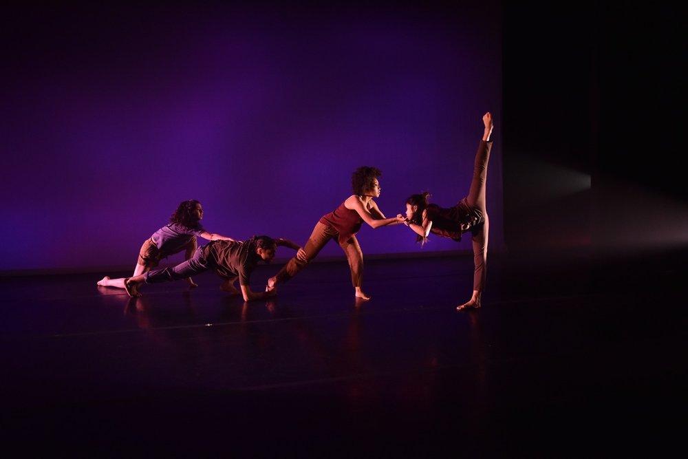 Dancelight 2018 for web 28191322509_cb1af66d90_o copy.jpg