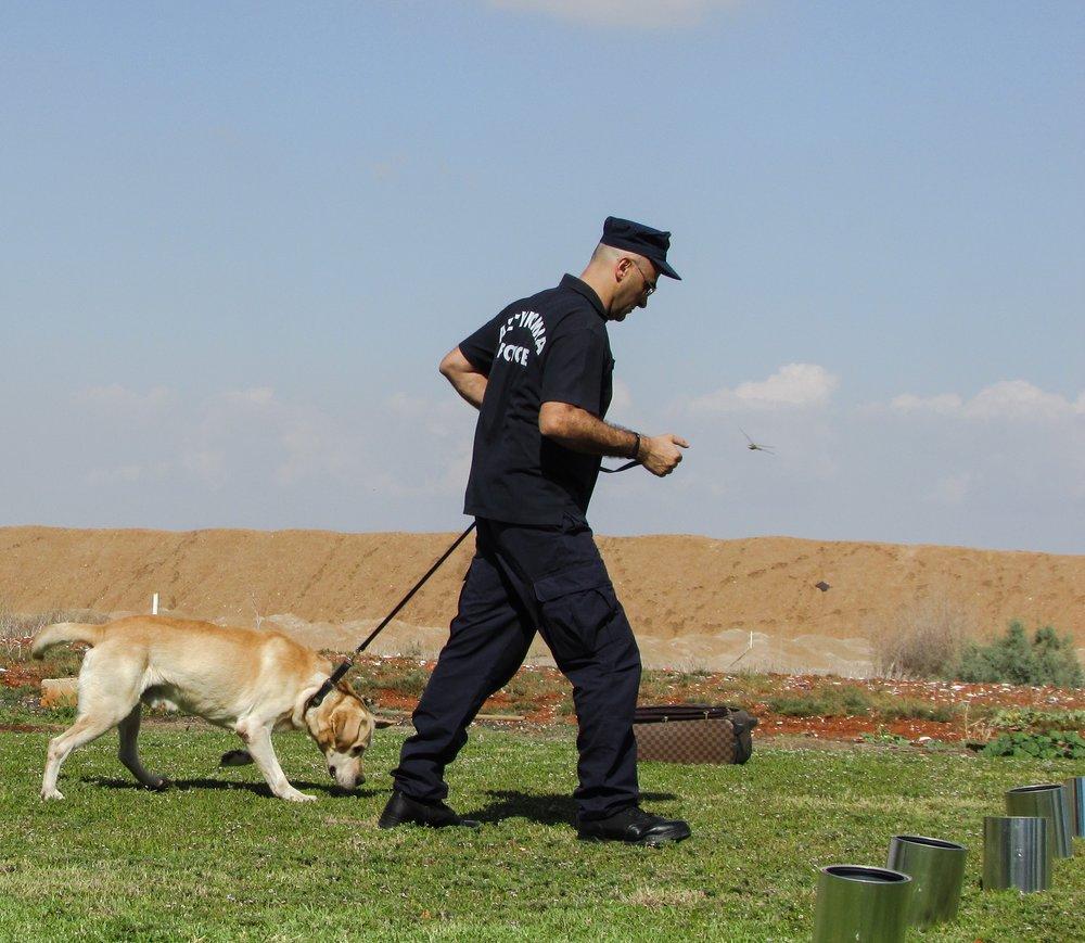 police-dog-1761871.jpg