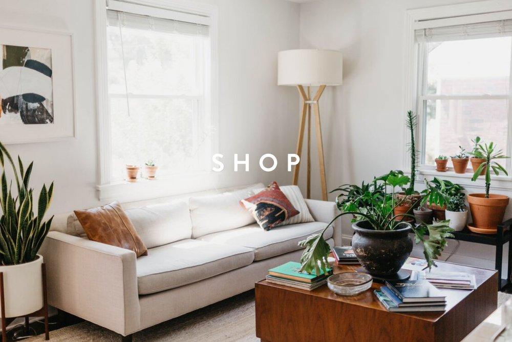 Shop+Header-01.jpg
