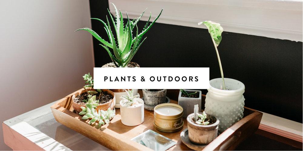 Plants & Outdoors-01.jpg