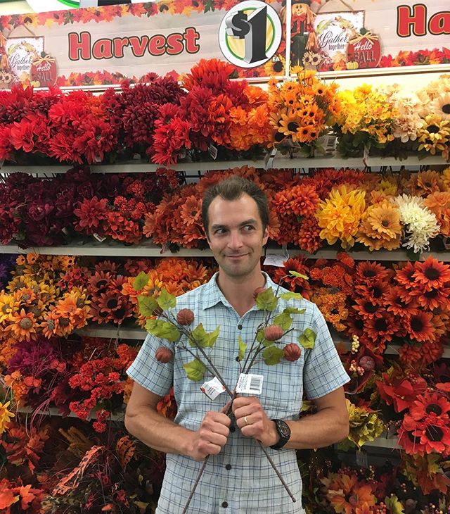 Fall flowers are in at @dollargeneral and I can hardly contain my excitement. Each year I say to myself things can't get any better and then they go and add 4 new colors of rudbeckia, a sunflower that can only be described as the Eye of Sauron, and these flesh colored dingle dangles that would just set off the lobby of any Howard Johnson. #sofreshandsoclean  #!!! #flownnotgrown #whydoieventry