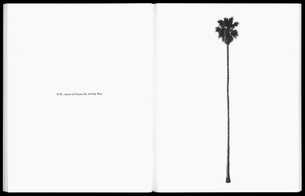 Ed Ruscha, from the publication A FEW PALM TREES, 1971
