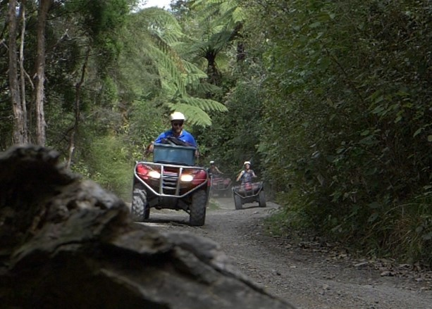 Cruising the trails on the quad bike tour