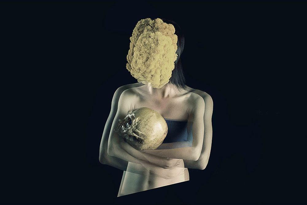 Los cuerpos transparentes | 2016