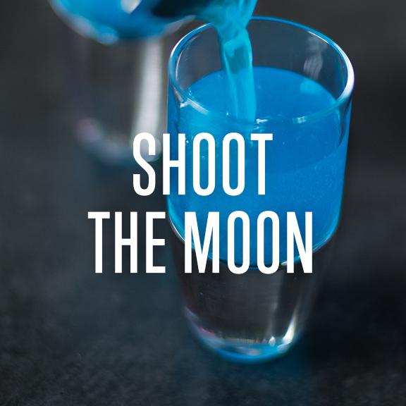 shootthemoon.jpg
